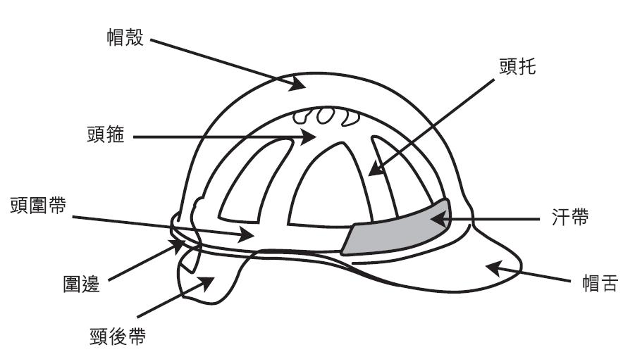 安全帽的结构及部件-知识中心-鹏亮工贸
